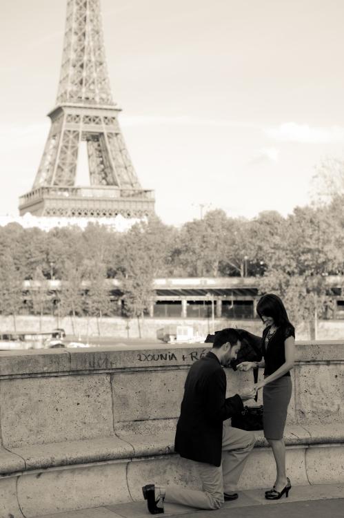 Eiffel Twer proposal
